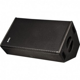 Stage monitor 12 a 2 vie 300W RMS